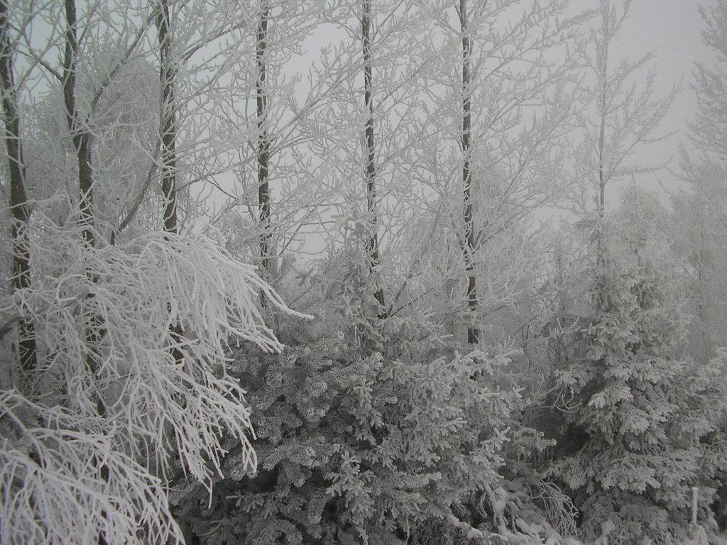 Zimowa aura na Górze Kamieńsk