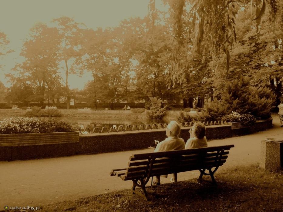 http://s2.flog.pl/media/foto/5429945_laweczka-w-parku.jpg