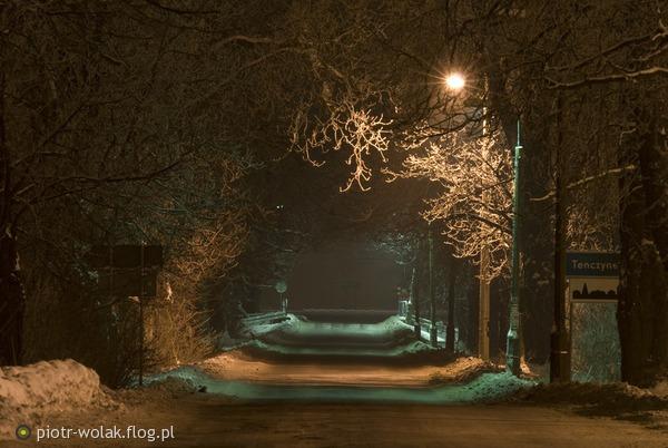 http://s2.flog.pl/media/foto_middle/4043192_aleja-kasztanowa-w-krzeszowicach.jpg