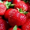 truskawki, smacznego :: za piękną dedykację, odwi<br />edziny i komentarze, dzię<br />ki