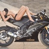 Takie tam na motorze ;)  :: http://www.facebook.com/p<br />ages/Foto-Martinez/135796<br />346476992